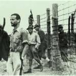 Italien und Deutschland im Zweiten Weltkrieg zwischen Erfahrung und Erinnerung